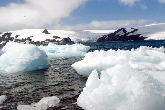 Reserva de conservação da vida marinha terá 1,55 milhão de quilômetros quadrados no Mar de Ross Arquivo/Ana Nascimento/Agência Brasil